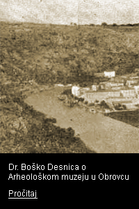 link-pdf-b-desnica